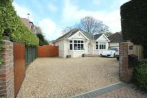 Detached Bungalow for sale in Brook Lane...