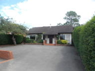 Detached Bungalow for sale in Frimley Road, Ash Vale
