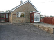 Detached Bungalow in TA20 3NA