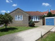 Detached Bungalow for sale in 9 Holly Grove, Crewkerne...