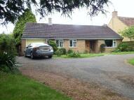 Detached Bungalow to rent in Church Street, Merriott