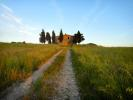 Villa for sale in Tuscany, Pisa, Lajatico