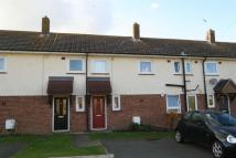 Edith Terraced property to rent