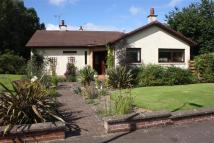 Detached Bungalow for sale in Mount Charles Crescent...