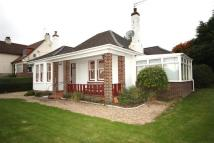 Detached Bungalow in Cargill Road, Maybole...