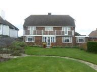 Detached house to rent in Sea Drive, BOGNOR REGIS