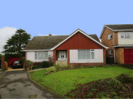 Leighton Green Detached Bungalow to rent