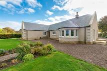3 bedroom Bungalow in Smailholm Lodge...