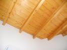 Annexe ceiling