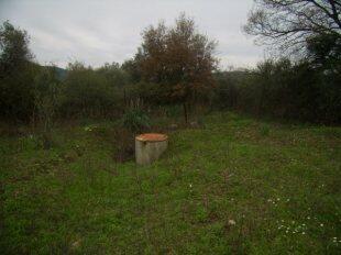 OG - Water well
