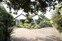 5 bed Detached Bungalow in Beverley Rd Sth...