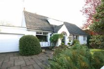 Kintour Road Detached Bungalow for sale