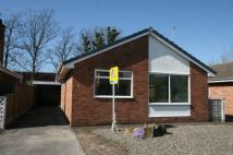 Detached Bungalow for sale in Pinewood Crescent...