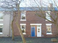 2 bedroom house to rent in St. Rollox Street...