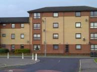 Laighpark View Flat to rent