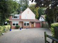 Detached house in Station Road, Corton...