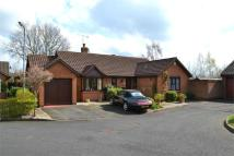 Detached Bungalow in Planetree Close...