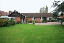 3 bedroom Detached Bungalow in Burton Row, Brent Knoll