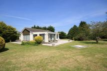 3 bed Detached Bungalow for sale in Wickham Way, East Brent...