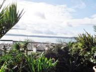 Flat in Central Torquay