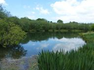 Commercial Property for sale in Glas-LLyn Fishery...