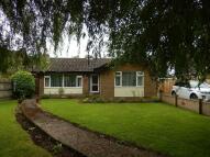 3 bed Detached Bungalow for sale in Delph Road, Long Sutton...