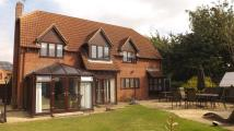 Detached property for sale in Maltby Drive, Baston...