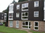 2 bedroom Flat to rent in Dell Road, Lowestoft...