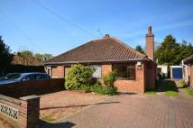 Semi-Detached Bungalow in Thorpe St Andrew, Norwich