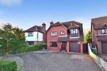 Detached home in Thorpe End, Norwich
