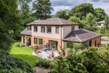 5 bedroom Detached home for sale in Beechwood, Morning Hill...