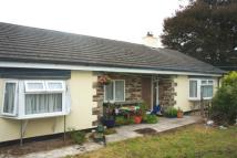 Bungalow to rent in The Green, Egloskerry...