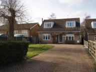 Detached property for sale in Crow Lane, Weeley