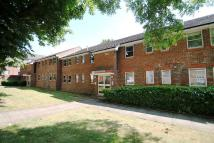 3 bedroom Flat to rent in Meudon Court, Grove Road...