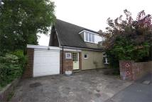 Detached Bungalow in Oxhey Road, Oxhey...