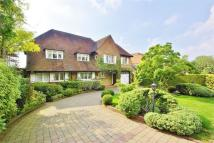 Detached house in Prowse Avenue...