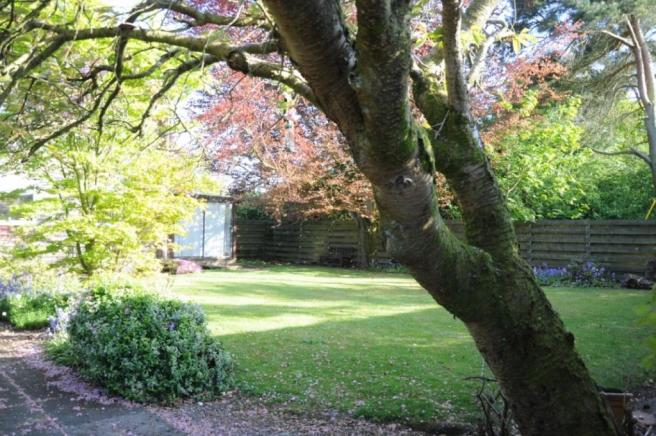 Garden 2 (Property Image)