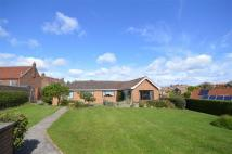 3 bed Detached Bungalow for sale in Byland Road, Whitby...