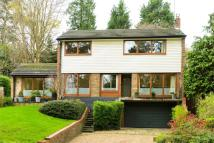 Detached house to rent in Camden Park Road...