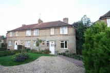 Newtown semi detached house to rent