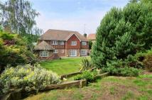 4 bedroom house in Treetops View, Loughton