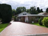 Detached Bungalow for sale in Oldway Drive, Solihull...