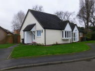 2 bed Semi-Detached Bungalow for sale in Cloudsley Grove, Solihull