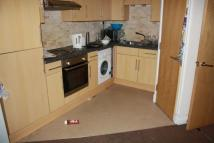 8 bedroom Terraced house in Rhymney Terrace, Roath...
