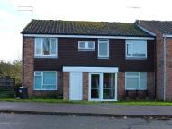 property to rent in Primrose Way...
