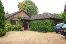 House Share in Room To Let, Wickham...