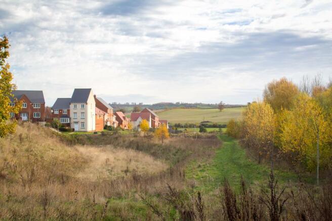 Wyndham View