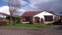 4 bedroom Detached Bungalow in The Mount, Wrenthorpe...