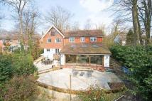 Detached property in Innhams Wood...