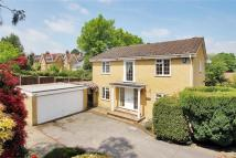 Broadwater Down Detached property to rent